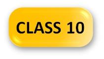 English Olympiad Syllabus Class 10 Button
