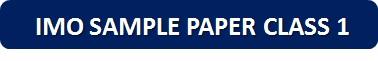 IMO Sample Paper Class 1 PDF Button