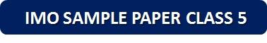 IMO Sample Paper Class 5 PDF Button