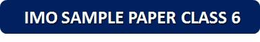 IMO Sample Paper Class 6 PDF Button