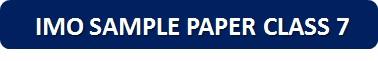 IMO Sample Paper Class 7 PDF Button