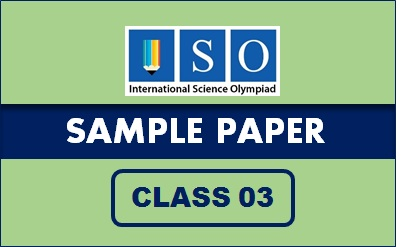 ISO Sample Paper Class 3