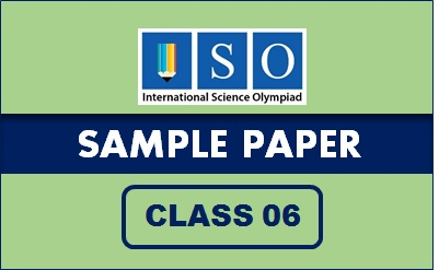ISO Sample Paper Class 6
