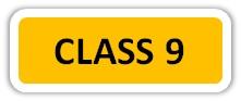 Maths Sample Workbook Class 9 Button